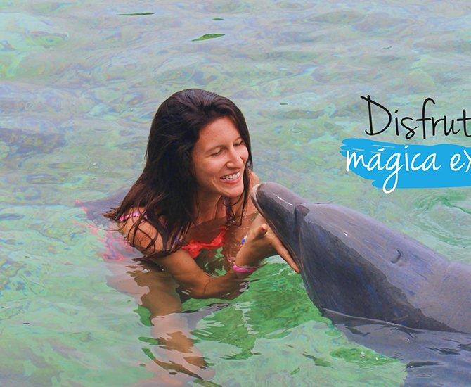 Tour en Islas del Rosario con delfines, acuario cerca de Cartagena